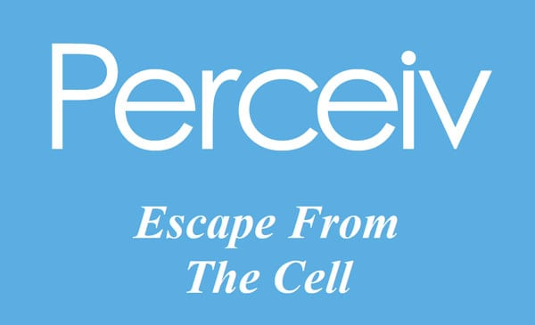 The logo for Perceiv, a service providing a spreadsheet and database app in Bath, UK