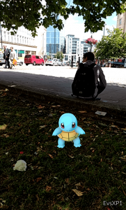 Park Bristol Pokemon tortoise small