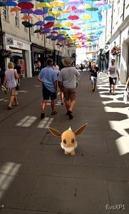 Southgate Bath Pokemon fox small