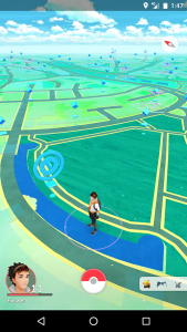 Tracking picture pokemon go