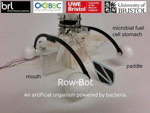 row-bot-diagram